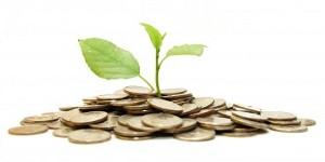 Росток из груды монет - символ инвестиций